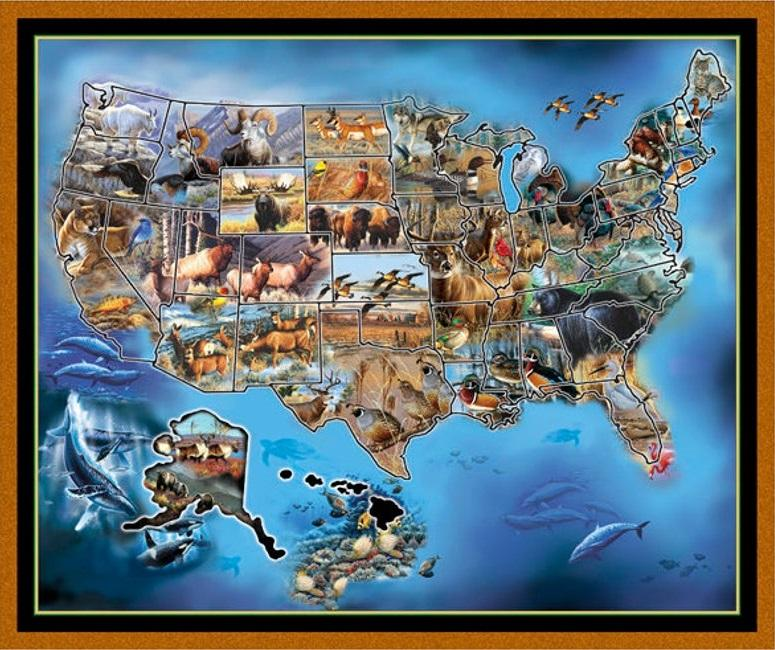 America Map with Animals