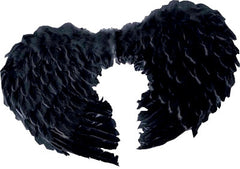 Add this set of Black Feather Wings to your Dark Angele outfit for the ultimate finishing touch. Made beautifully from feathers with comfy straps that slip over your shoulders.  SIZE:45x60cm CostumesNQ