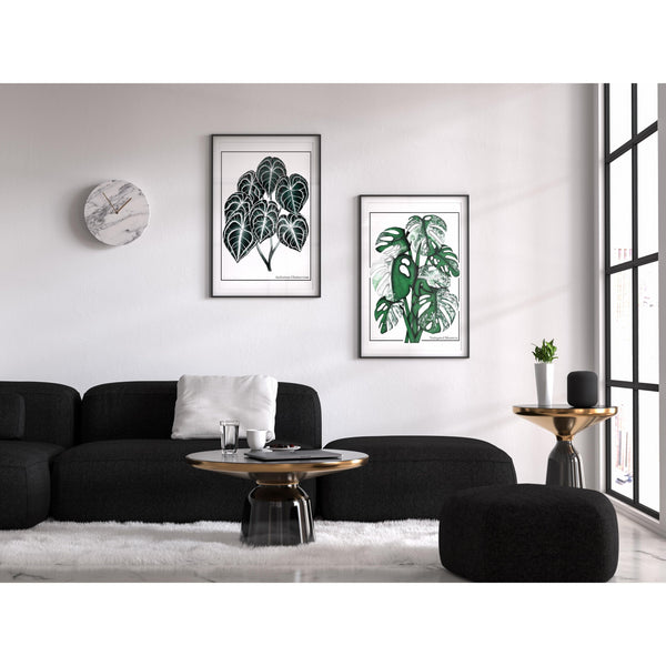 Anthurium Clarinervium and Monstera artwork framed and hanging side by side about a lounge in a vey modern setting