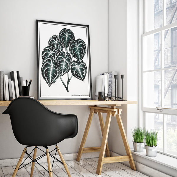 Anthurium Clarinervium artwork framed and sitting on an office desk