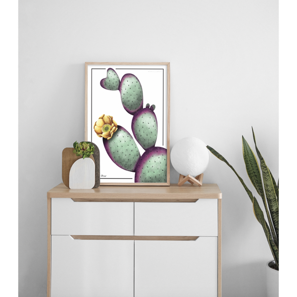 Prickly Pear Cactus - Luxe Foliage
