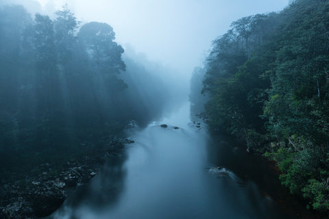 Arthur River By Misty Moonlight by Nick Monk