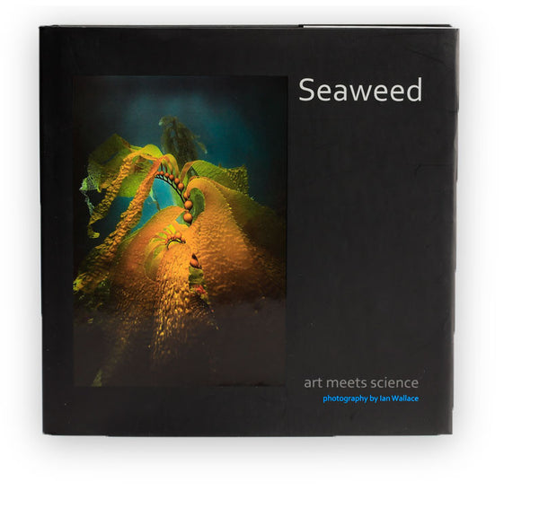 Seaweed: Art Meets Science