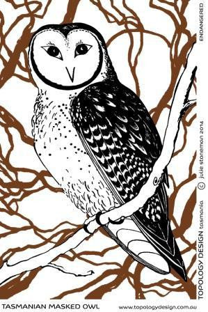 Endangered Species Tea-Towel Masked Owl