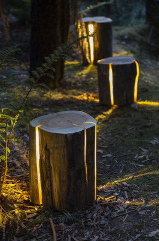 Stump - Table/Stool/Light by Duncan Meerding