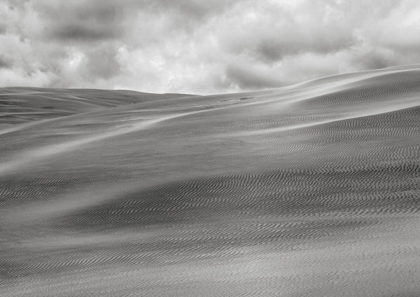 Tarkine Dune by Grant Kench