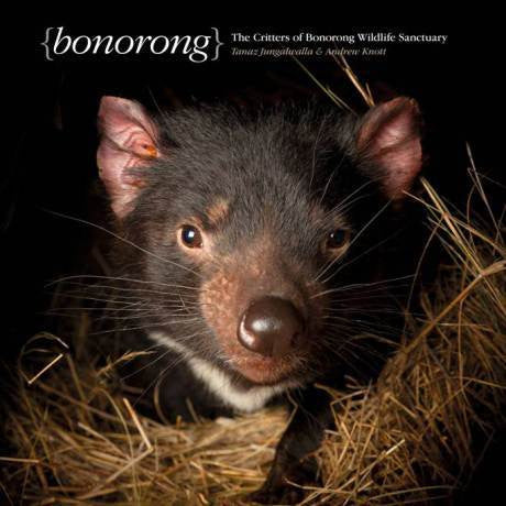 Bonorong: The Critters of Bonorong Wildlife Sanctuary