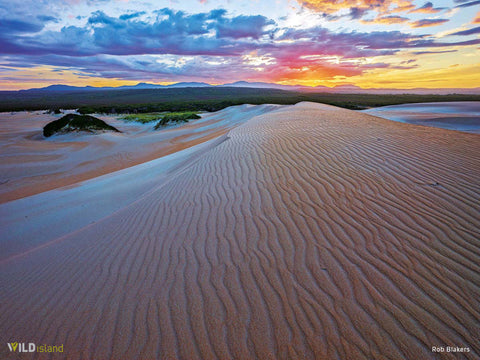 Dunefield Sunrise by Rob Blakers