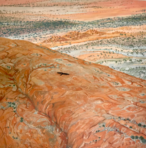 'Wedgetail, Mimilli Country, Northern South Australia' by Erika Calder