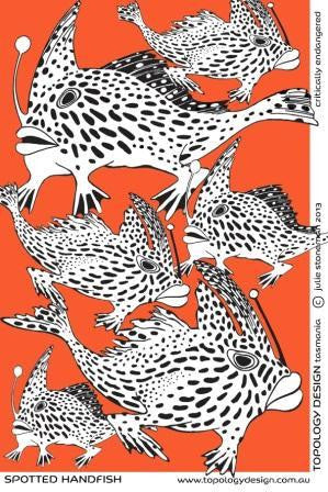 Endangered Species Tea-Towel Spotted Handfish