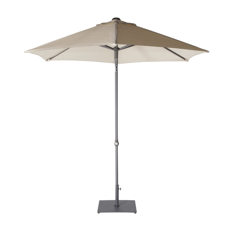 Harbord Umbrella