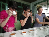 Tea Tasting Training - Overview