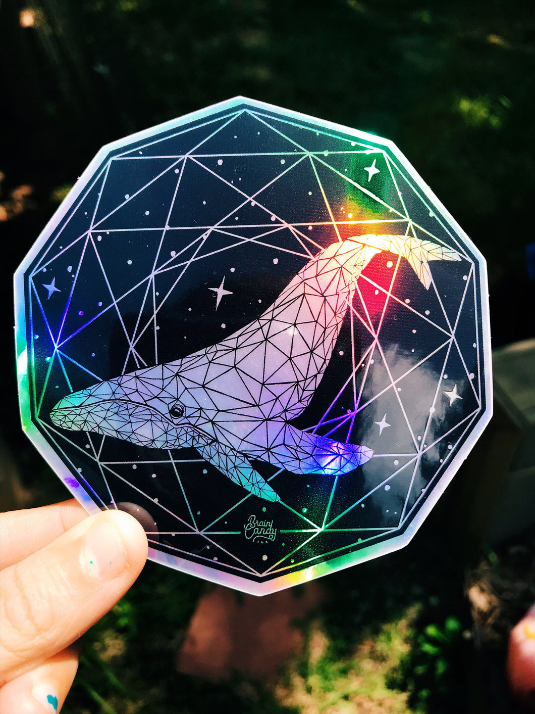 Whale Holographic Sticker