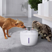 2.5L Water Fountain Bowl - Chewy Dog Treats LLC