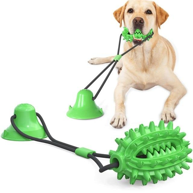 Suction Cup Rubber Toys - Chewy Dog Treats LLC
