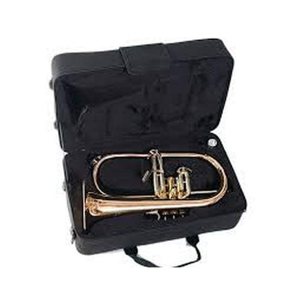 Elkhart 100FHR Flugel Horn by Vincent Bach Flugelhorns, Vincent Bach, Sounds Great Music