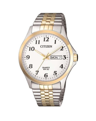 Citizen Mens two tone Plated BF5004-93A Expansion Strap