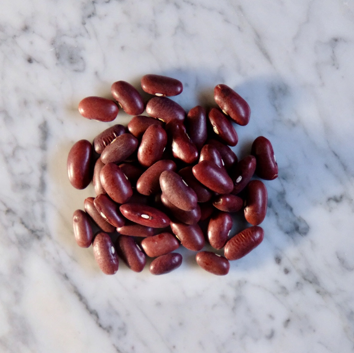 Dark Red Kidney Beans, Organic