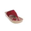 Buy Maroon Color Casual Softy CL5051 at Shapago