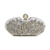 Stylo-Silver Color Bags Clutch P13744