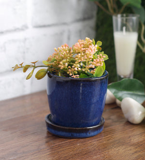 Glazed ceramic shaded round mini pot with saucer.