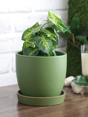 Ceramic table top planters