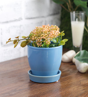Glazed ceramic table top mini pot with saucer