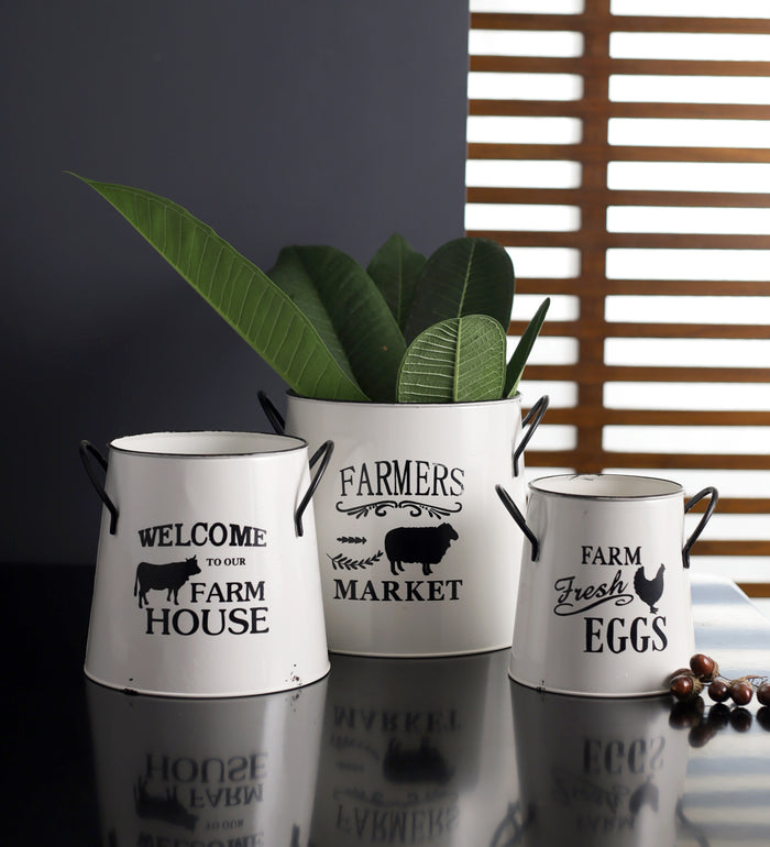 Fresh farm metal vase set of 3