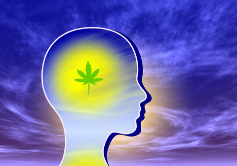 Using cannabis to expand mind consciousness.
