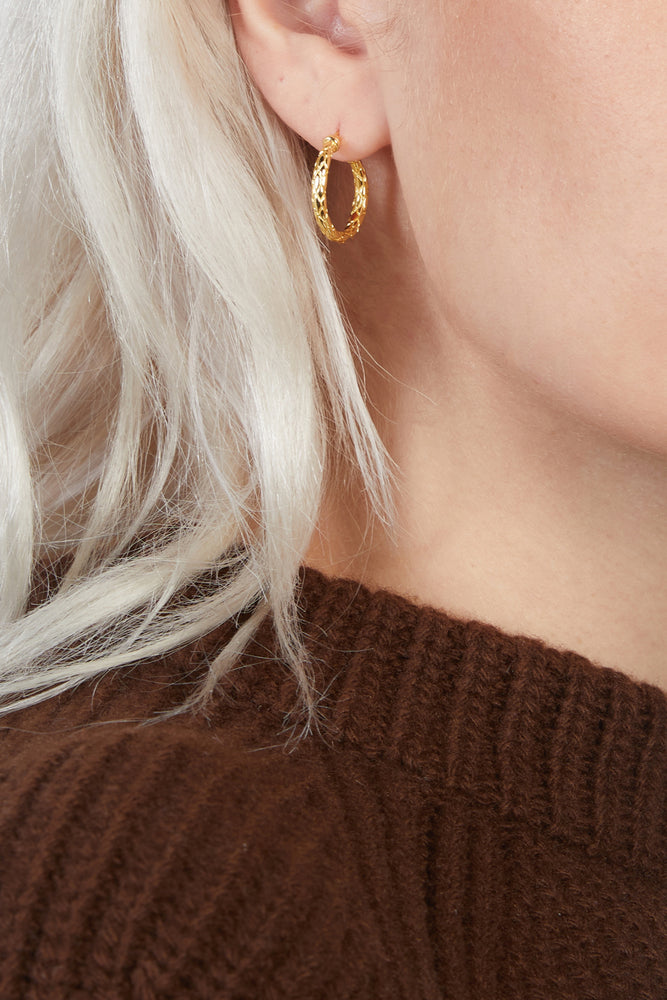 Load image into Gallery viewer, F+H JEWELLERY - SNAKESKIN HOOPS