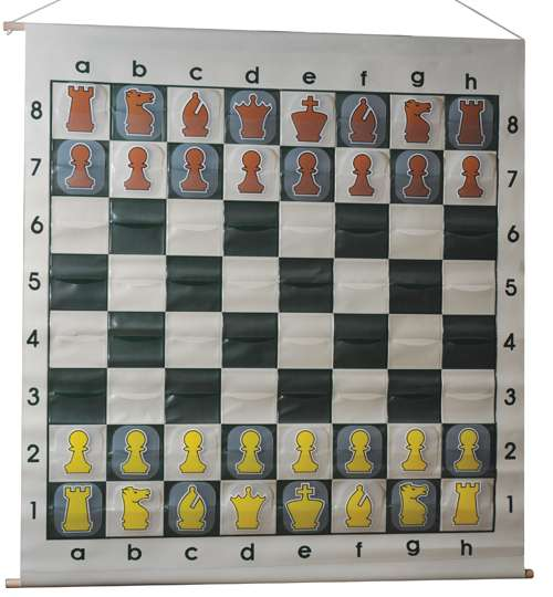 Demo 1: Large Slot-in Chess Demonstration Board