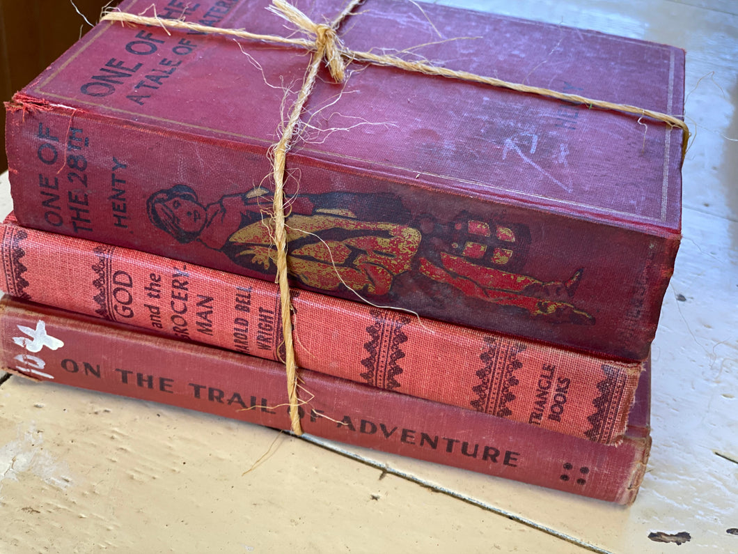 Collection of Books - Red