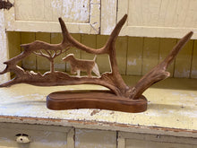 Load image into Gallery viewer, Antler Carving A