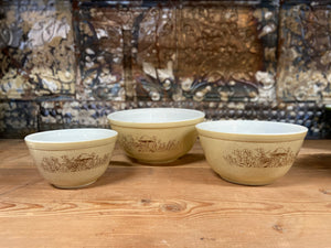 Pyrex Forest Fancies Bowl Set