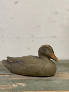 Duck Decoy B