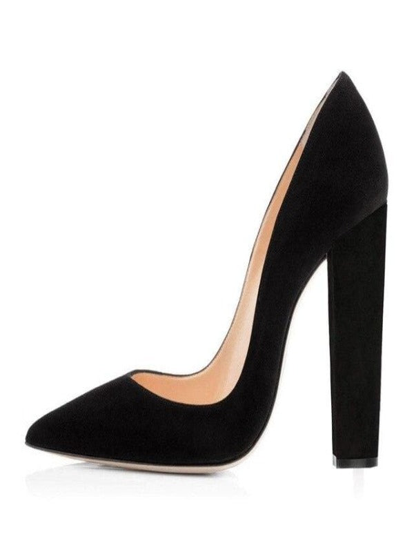 Rosaline Y8913A / 5 Classic high heels pointed toe