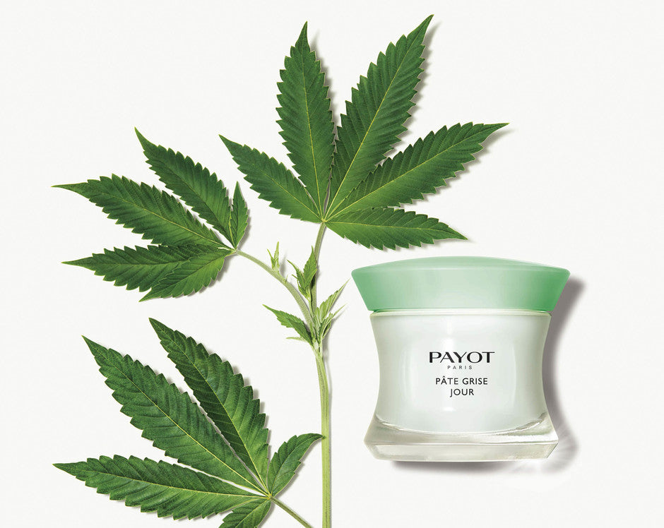 Payot - Pate grise Jour - 50ml
