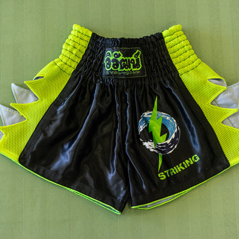 EvolveAll Striking Shorts
