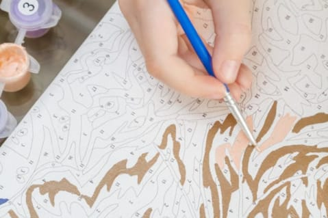 How to - Paint by Numbers
