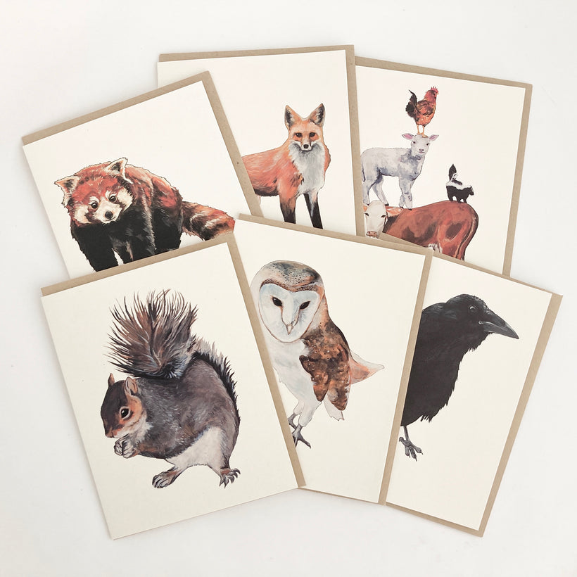 Greeting Card Bundles
