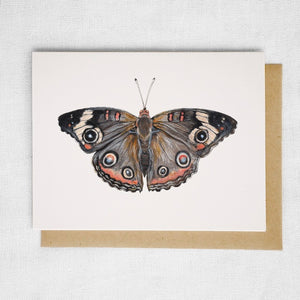 Common Buckeye Butterfly Card