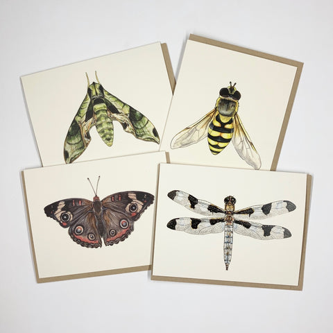 Insect 8 Card Set