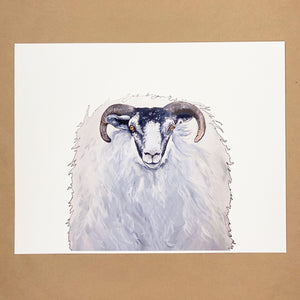 Horned Sheep Print