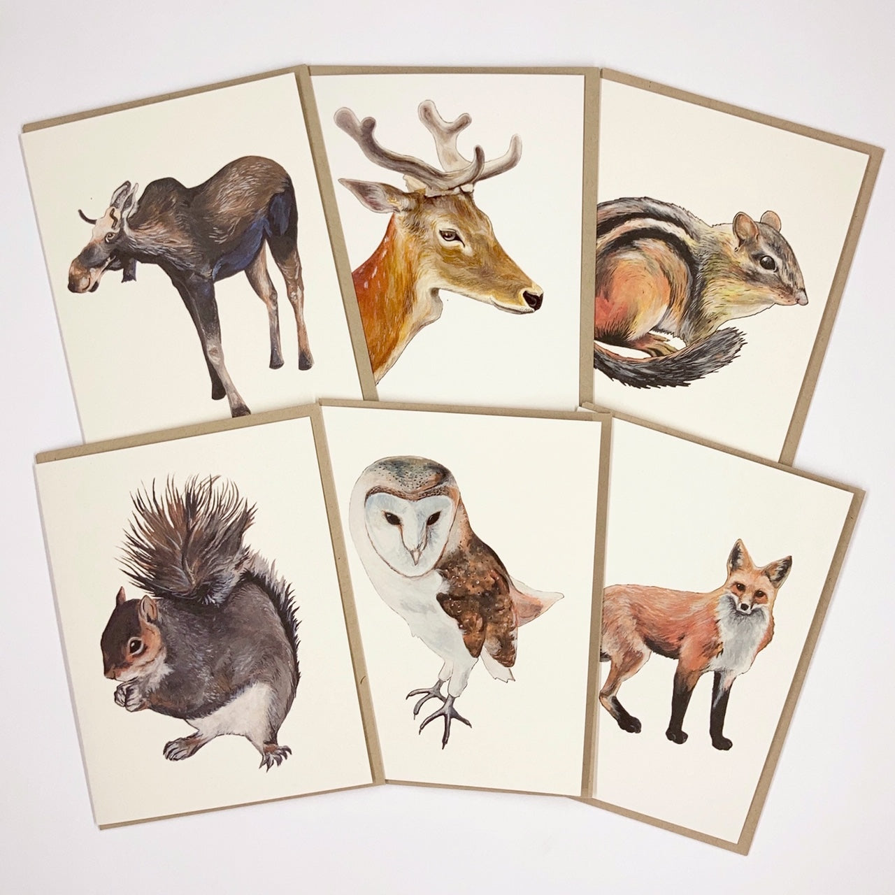 Forest Animals 6 Card Set