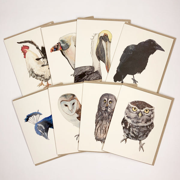 Bird 8 Card Set
