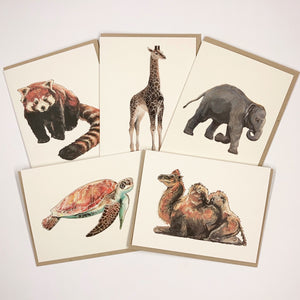 Cool Creature 10 Card Set