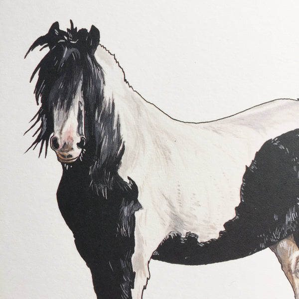 Clydesdale Horse Card