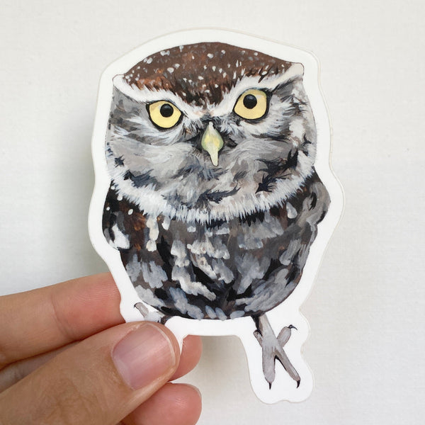 Little Owl Sticker