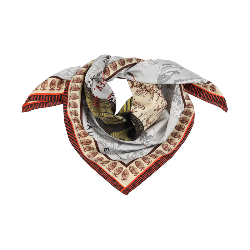 asauvage dan passport scarf in silk