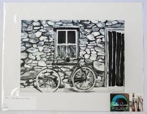 The Old Fashioned Bike - By Feilin Campbell